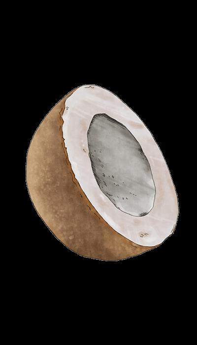 SALMIAKKI - CHOCOLATE COATED LIQUORICE WITH SALMIAK 150 GR